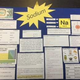 The Quran and Science -An Integration Project for Year 7-10 Science Students