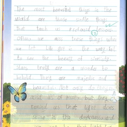Grade 1C Weekly Writing Journal Entries